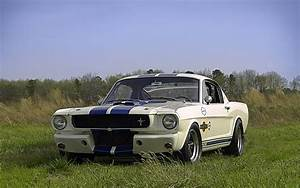 '65 Shelby GT350 R (With images) | Ford mustang 1965, Mustang fastback