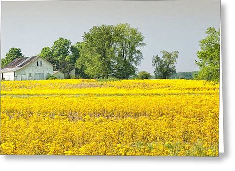 People like you make me realize just how uncreative i am with my farm design. Spring Farm Scene Photograph by Brian Mollenkopf