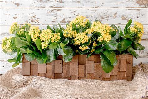 build  pretty wooden planter