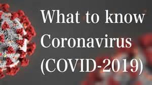 Human Coronavirus Structure