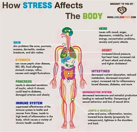 14 Effective Natural Remedies For Stress And Anxiety. Victory Signs. Indicator Signs. Boy Room Signs Of Stroke. Early Signs. Symptom Fast Signs. High Temperature Signs. Social Networking Signs. Safety Moment Signs