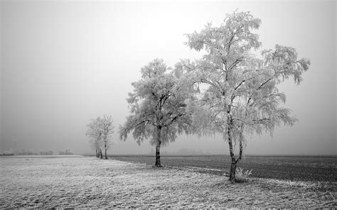 winter of the soul that i might