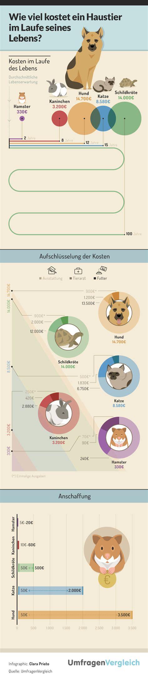 Wie Viel Kostet Ein Haustier?  Die Infografik