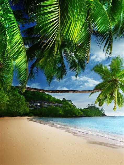 Coast Paradise Tropical Sea Sky Wallpaper 1536x2048