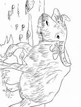 Buffalo Coloring Pages Animals sketch template