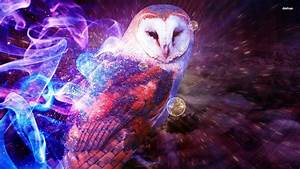 Owl Wallpapers For Computer