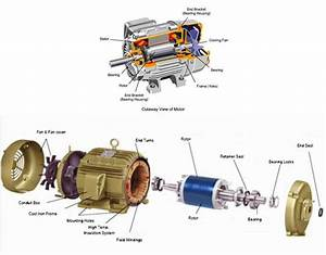 Ac Motor Basic Parts