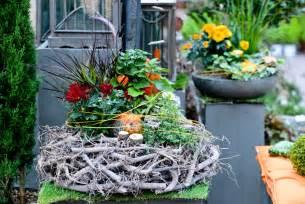 herbst balkon pflanzen herbst balkon winterhart raum und möbeldesign inspiration