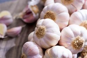 Planter Ail Rose : en f vrier plantez de l 39 ail rose dans votre jardin ~ Nature-et-papiers.com Idées de Décoration