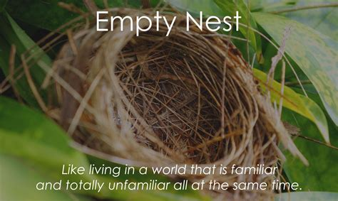 Nest Syndrom by Empty Nest Article Written By One Of My Lovely