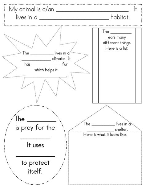 habitat worksheet for 1st grade free worksheet printables