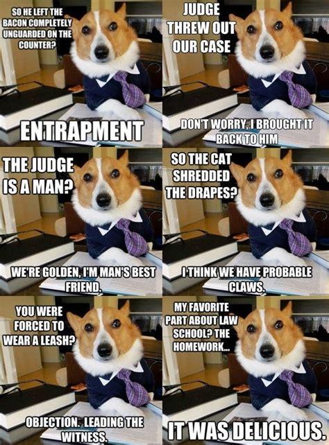mans  lawyer silly jokes legal humor lawyer jokes