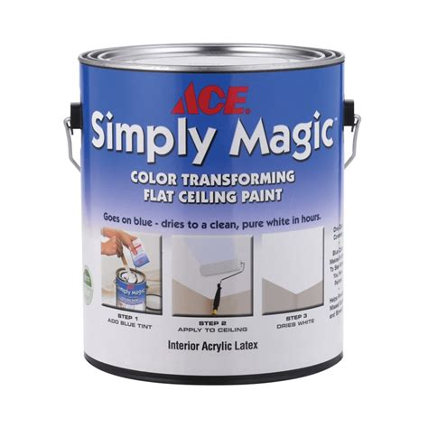 ace simply magic 174 color transforming ceiling paint