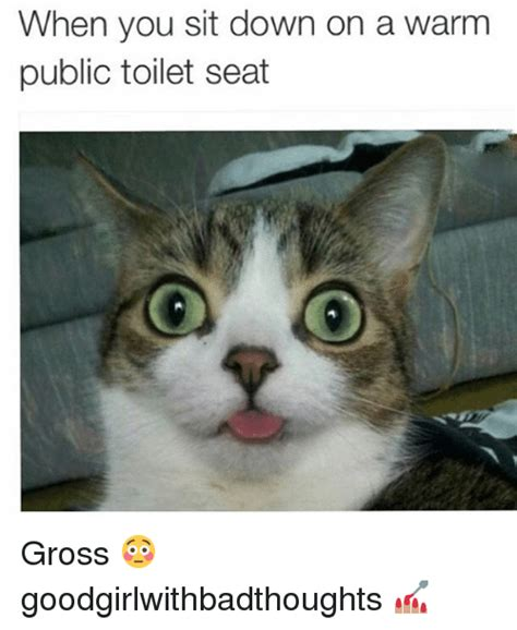 Warm Toilet Seat Meme - when you sit down on a warm public toilet seat gross goodgirlwithbadthoughts meme on sizzle