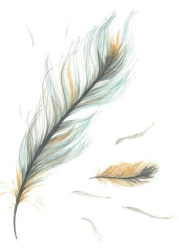 pin  katie crabtree  tattoos feather drawing