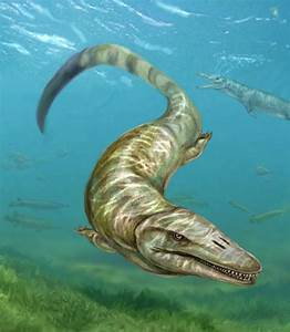 Ancient Sea Monster Found—First Freshwater Species Known