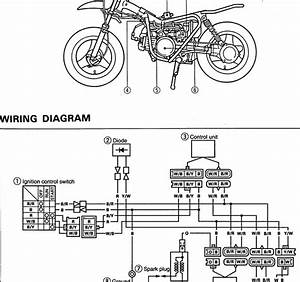 Yamaha Dirt Bike Wiring Diagram