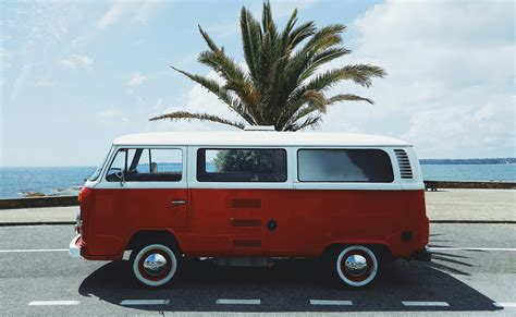 White, Red, Beach, Volkswagen, Palm Trees
