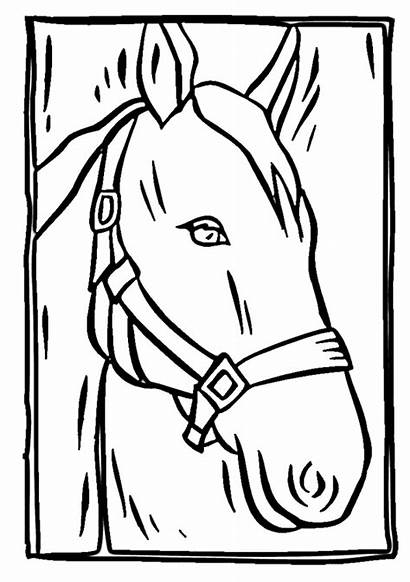 Horse Coloring Pages Head Drawing Heads Printable