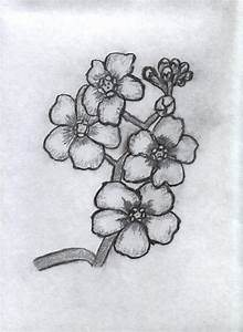 Charcoal Flowers by Taylor98 on DeviantArt