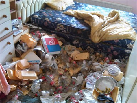 special cleaning hoarders dream clean services