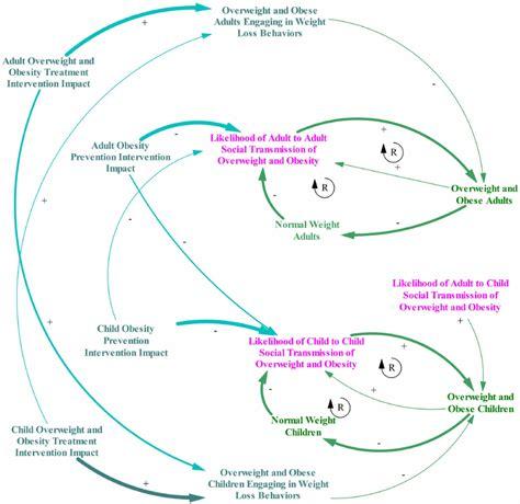 Food Loop Diagram by Causal Loop Diagram Of And Child Social Transmission