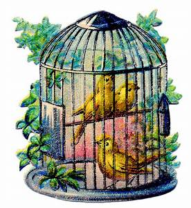 Vintage Image - Pretty Canary Bird Cage - The Graphics Fairy