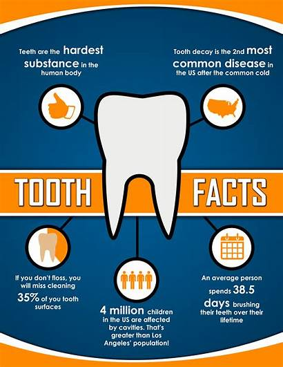 Teeth Dental Tooth Brushing Posters Facts Dentist
