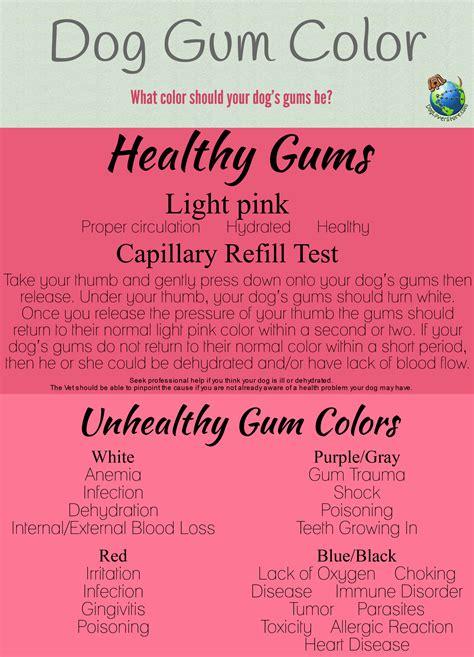 gum color what color should your s gums be