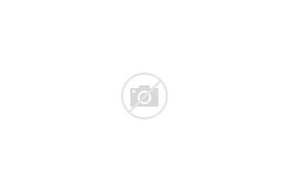Boxing Gloves Blonde Brunette Woman Pigtails Bra