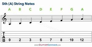Guitar Strings Notes Chart  Tab  U0026 Info  Tune Up  U0026 Master