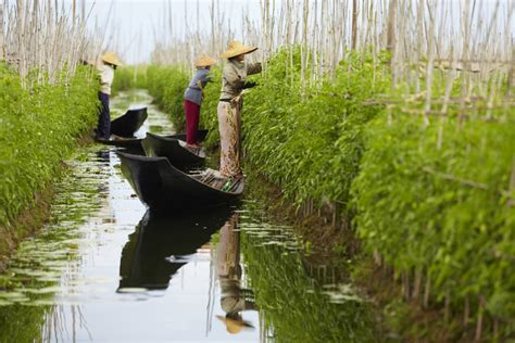 In Myanmar, Natural Resources Are Key To Conflict
