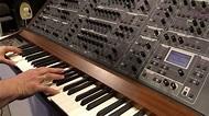 Nova Musik - Schmidt 8 Voice analog polyphonic synthesizer ...