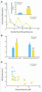 Neuropathy Score And Correlation Of Bumps To Meissner U0026 39 S