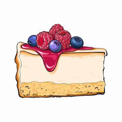 Cheesecake Cake Slice Piece Vector Drawing Hand