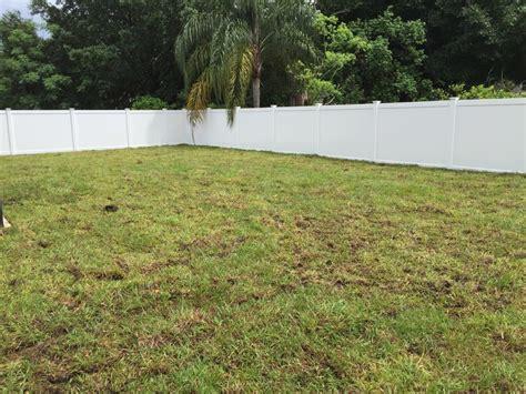 Orlando Aregentine Bahia Grass