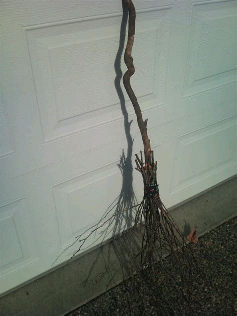 crafty witches broom  images witch broom witch
