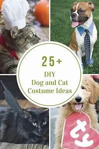 DIY Dog and Cat Costume Ideas - The Idea Room