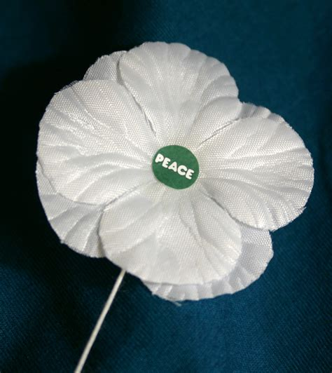 White Poppy by White Poppies For What Was Forgotten Rethinking