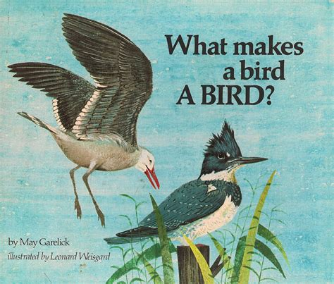 the art of children s picture books what makes a bird a