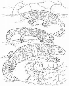 Gila Monster Coloring Page Coloring Coloring Pages