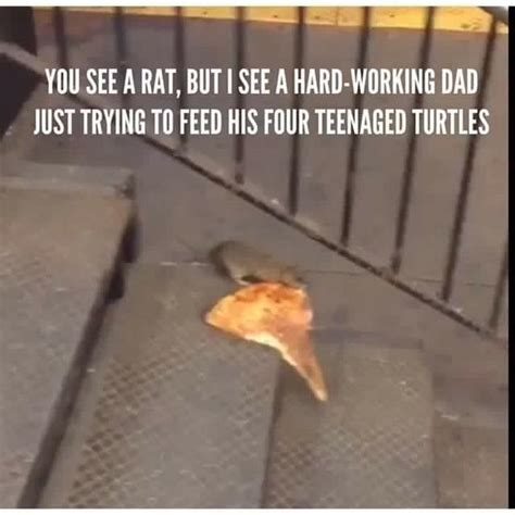 Rat Memes - master splinter pizza rat know your meme