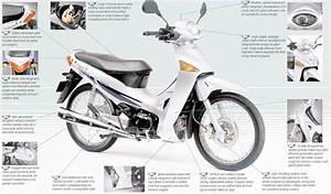Honda Anf125 Innova 2003  U2013 2012 Haynes Owners Service And