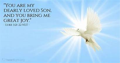 Luke Mark Jesus Niv Scripture Message Holy