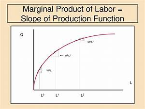 Labor Production Function Graph Pictures to Pin on ...