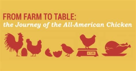 farm table dining room farm to table chicken check in