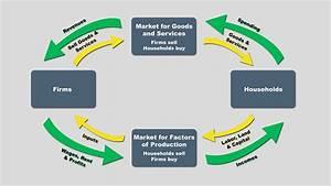 Microeconomics Video Module
