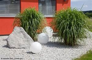Haus Garten Test : exotische wohnzimmer zimmerpflanzen pflege tipps ~ Orissabook.com Haus und Dekorationen