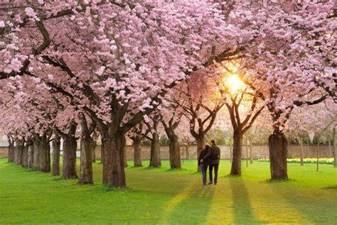Mano istorija: toks gražus pavasaris, o aš vėl vienas ...
