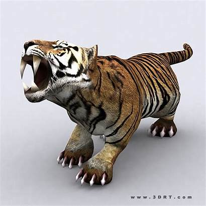 Tiger Animal Fantasy 3d 3drt Animated Poly